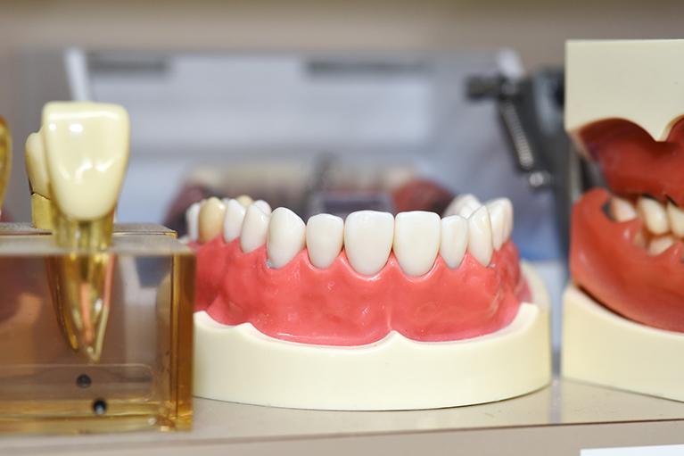 大人の歯並びについて